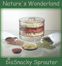 sprouter with a variety of sprouting seeds