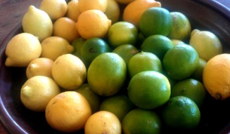 Lemons and limes are one of natures great gifts and including them in your morning routine has huge health benefits