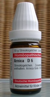 Homeopaths often reach for Arnica as the first remedy to heal anyone affected by shock, trauma or injury