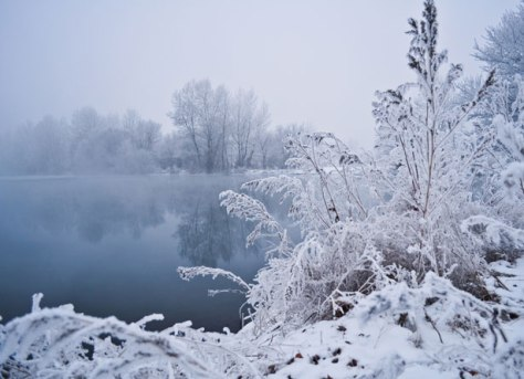 If you build up your health before winter arrives you are far more likely to get through without falling victim to lots of colds or worse, the flu.   Photo credit: Flickr Winter Fog by Larisa Koshkina