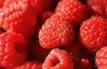 Red raspberries are a powerful antioxidant