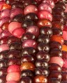 Purple corn Photo credit: Randen Pederson