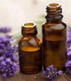 Copy of lavender essential oil