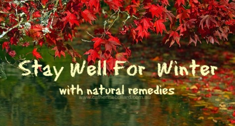 stay Well For Winter 4